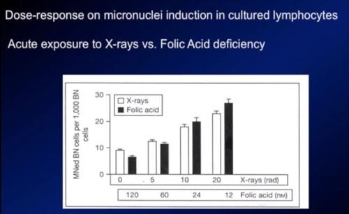 xray folic acid